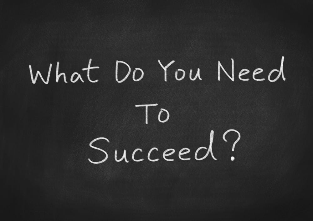 What Do You Need to Succeed?