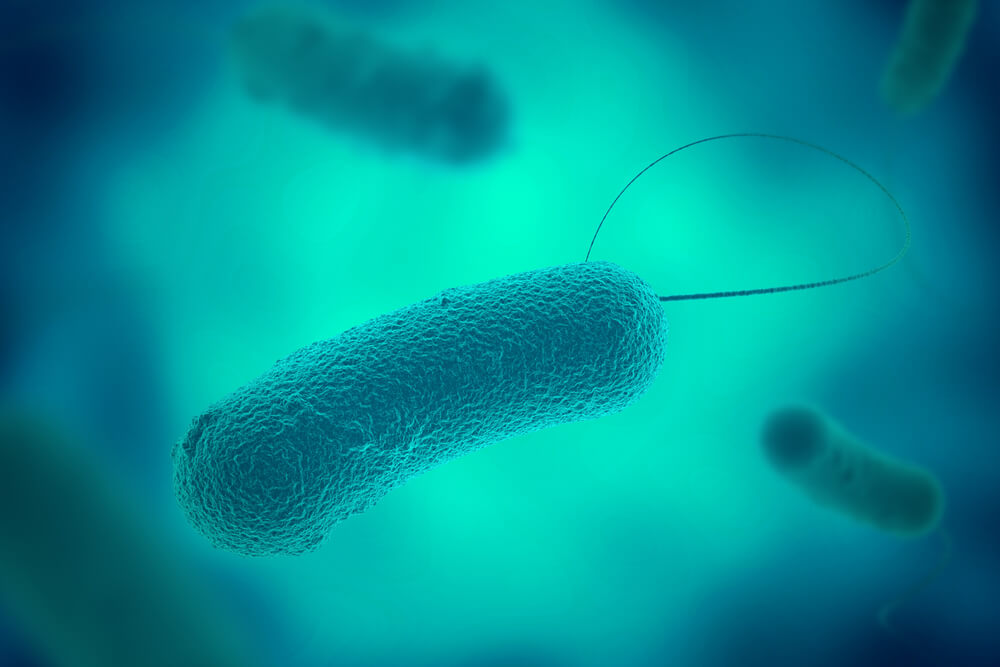 New Legionella risk to properties posed by Coronavirus